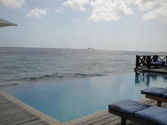 Scuba Lodge & Suites: vista da piscina