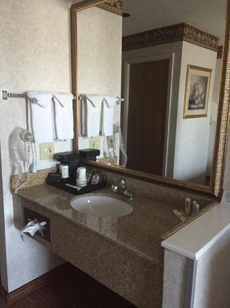 Quality Inn: Love the sink area