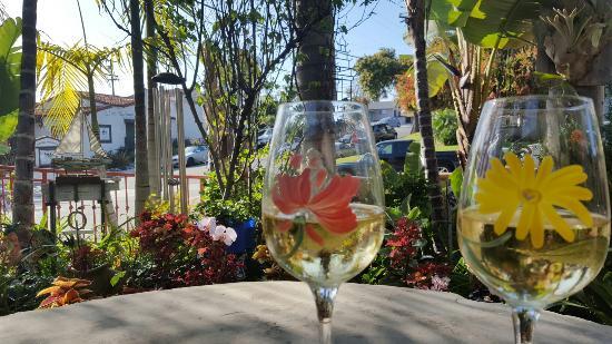 San Clemente, CA: 20160401_165830_large.jpg