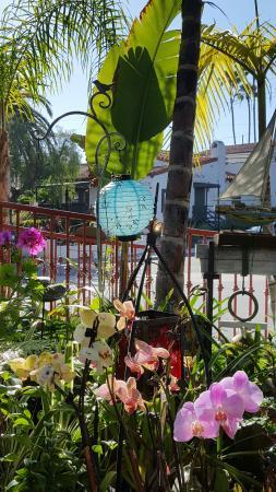 San Clemente, CA: 20160402_164946_001_large.jpg