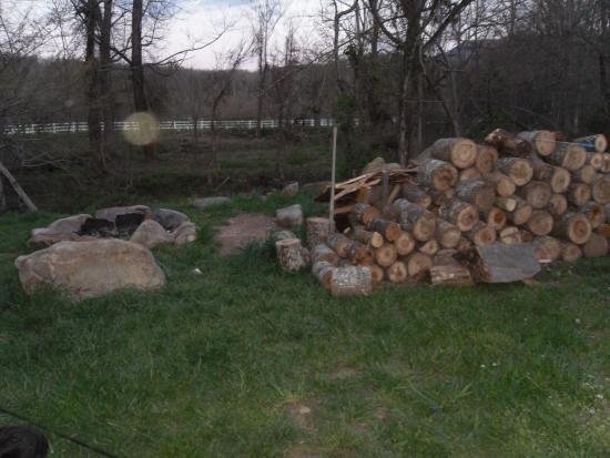 The Cub Motel: Bonfire pit area, they even provide the wood! It's right next to the stream too!