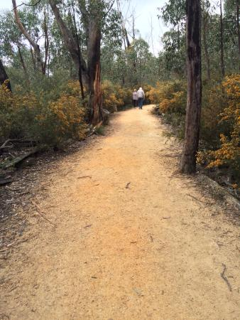 Grampians, Australia: the path that leads to The Balconies