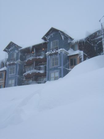 Mount Washington, Canadá: Stay in Bear Lodge 401. Top floor location on the sunny side of the building. True ski in/out.