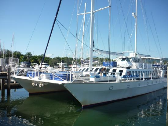 Macrossan House Boutique Holiday apartments : The catamaran we went for a trip to the Low Isles on