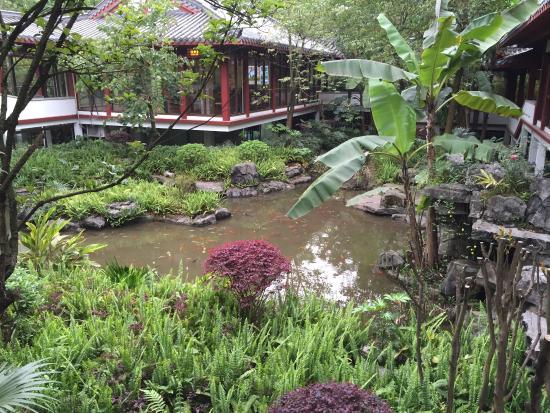 Gulin Zizhou Panorama Resort: Fish pond