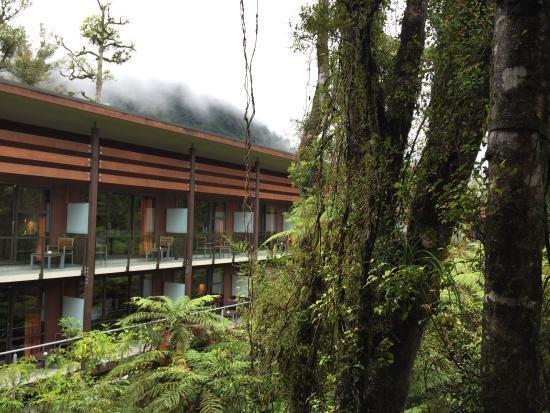 Te Waonui Forest Retreat: photo0.jpg