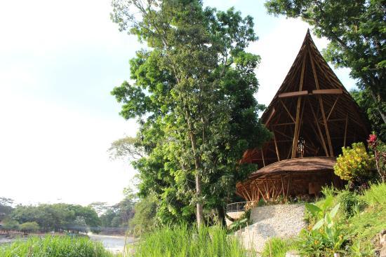 Ecolodge Bukit Lawang