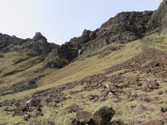Carsaig Arches : More Waterfall