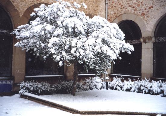 Hospederia El Convento: Claustro