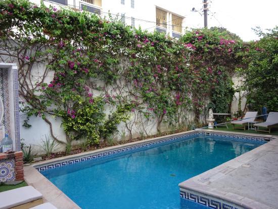 Kleiner Pool kleiner pool picture of casa mara dakar dakar tripadvisor