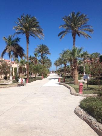 Hotel Ali Baba: Hotel Park
