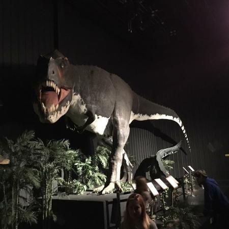Branson Dinosaur Museum