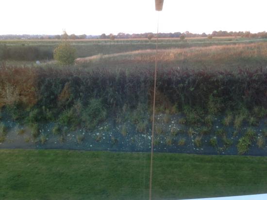 Ibis Budget Bayeux: Vista dalla camera