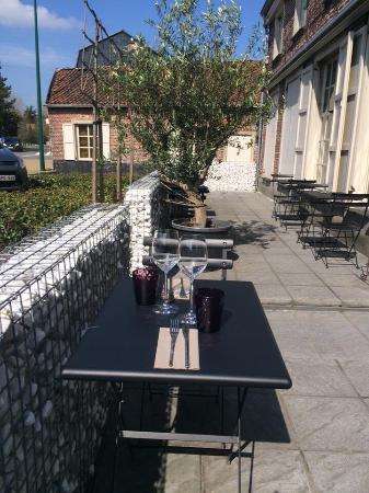 Evergem, بلجيكا: Vier Linden