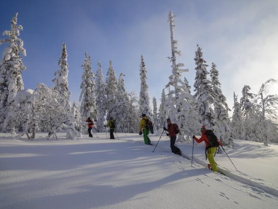 Akaslompolo, Finland: Snowshoeing Adventures