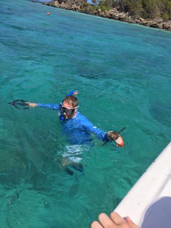 spearfishing near palomino island picture of spearfishing puerto rh tripadvisor com au