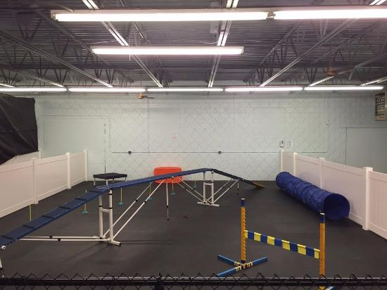Woburn, Μασαχουσέτη: This is the agility area for those that want some REAL dog training, hehe.