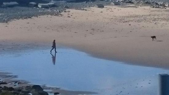 Alderney, UK: Solitude on Corblets beach
