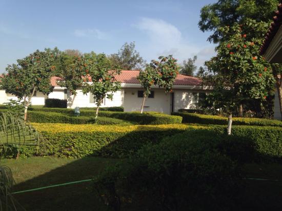 Navjivan Nature Cure Centre