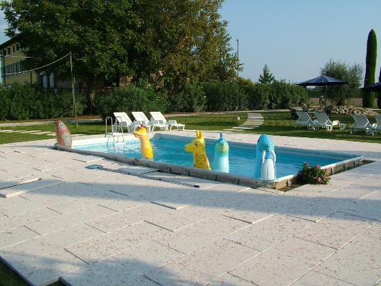 B&B Mambrotta: Panoramica piscina