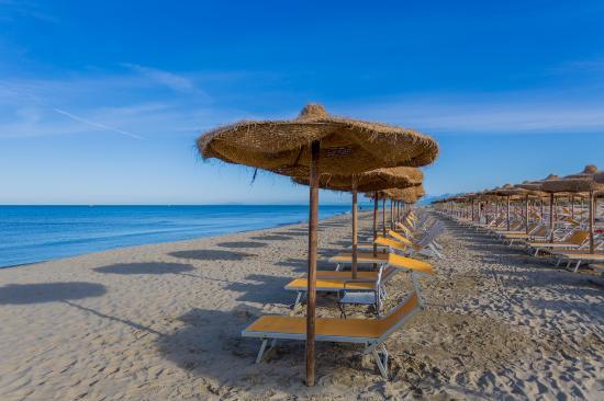 Calambrone Tourism Best Of Calambrone Italy Tripadvisor