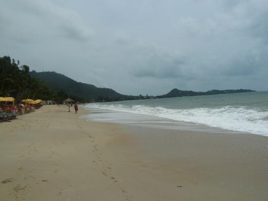 Tropical Palm Resort and Spa : lamai beach 2016