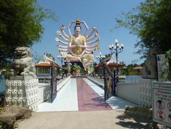 Tropical Palm Resort and Spa : near big budha