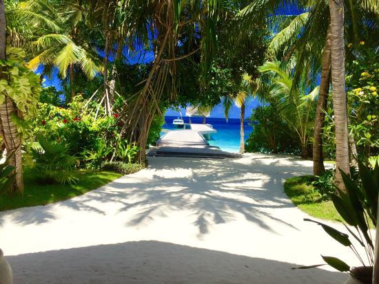 Kuramathi Island Resort: photo1.jpg