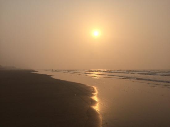 Resort Hirak Jayanti : photo5.jpg