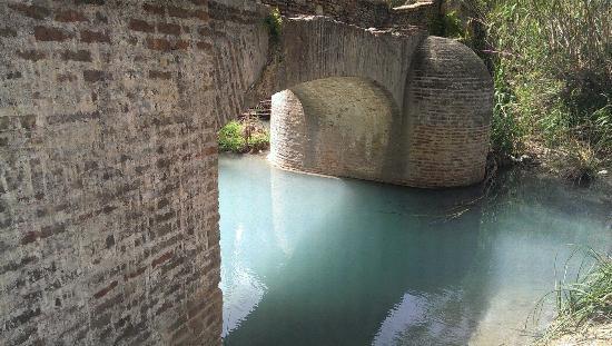 Baños Romanos De La Hedionda ~ Dikidu.com
