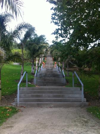 Bason Botanic Gardens: Steps to upper level