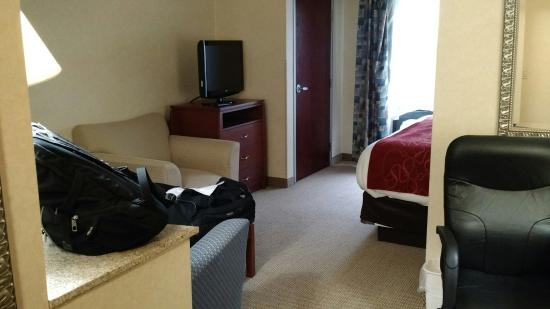 Comfort Suites South: Room