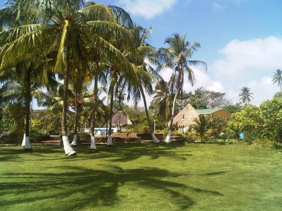 Punta Sur: Green Zone 2