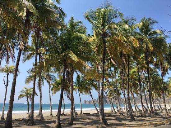 Puerto Carrillo : photo0.jpg