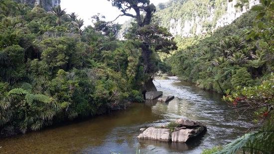 Punakaiki, New Zealand: Stunning river with towering rock-face on either side