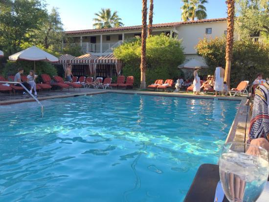 The Purple Palm Restaurant & Bar: pool