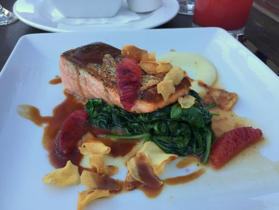 The Purple Palm Restaurant & Bar: grilled salmon on spinach