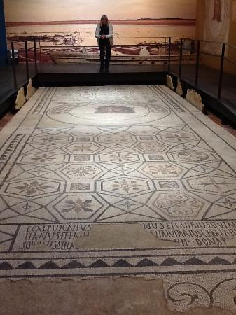 Ancient Roman Tile Floor Depicting A Sea God Picture Of Museu