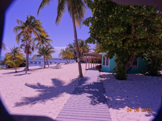 Southern Cross Club: 2015-04-April SB Little Cayman Island (184)_large.jpg