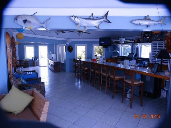 Southern Cross Club: 2015-04-April SB Little Cayman Island (190)_large.jpg