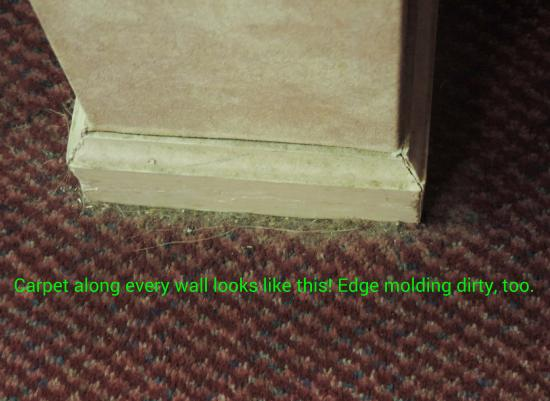 Priceville, AL: Shows dust & debris on carpet along baseboard. Every wall looks like this