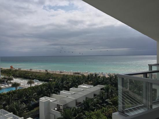 W South Beach: photo2.jpg