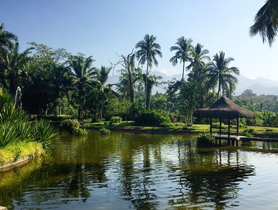 The Farm at San Benito: Resort grounds