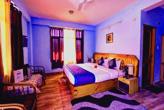 Hotel Ridge View Manali