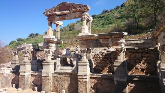 Octavius Ephesus Tours