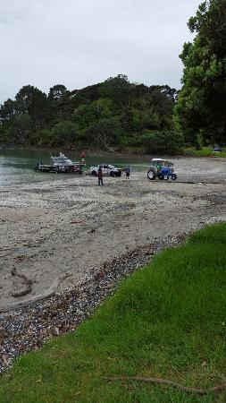 Coromandel Peninsula, Nueva Zelanda: 20160401_103024_large.jpg