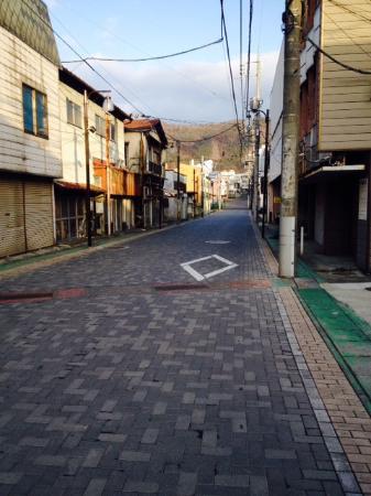 Mt. Fuji Hostel Michael's: Jalan Akses Hotel-Stasiun Gekkoji