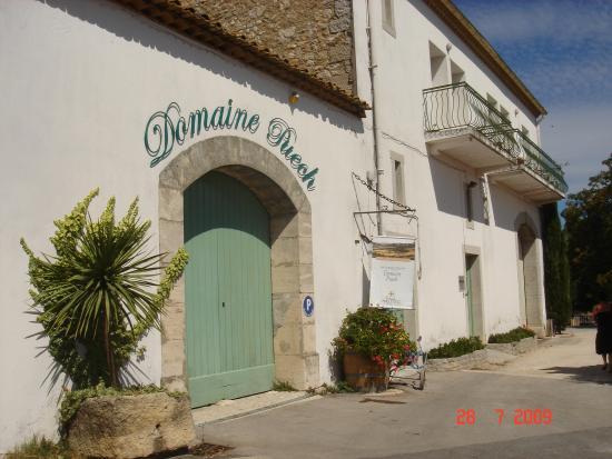 Saint-Clement-de-Riviere, Francia: Le Domaine Puech (l'entré)