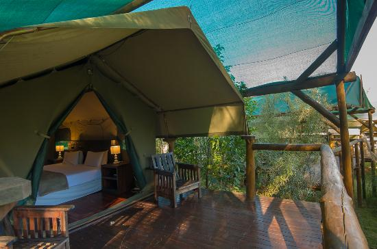 Amadwala Lodge Safari tent & Safari tent - Picture of Amadwala Lodge Roodepoort - TripAdvisor