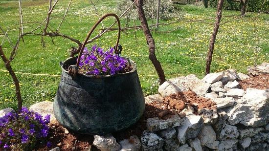 Zminj, Kroasia: Details...